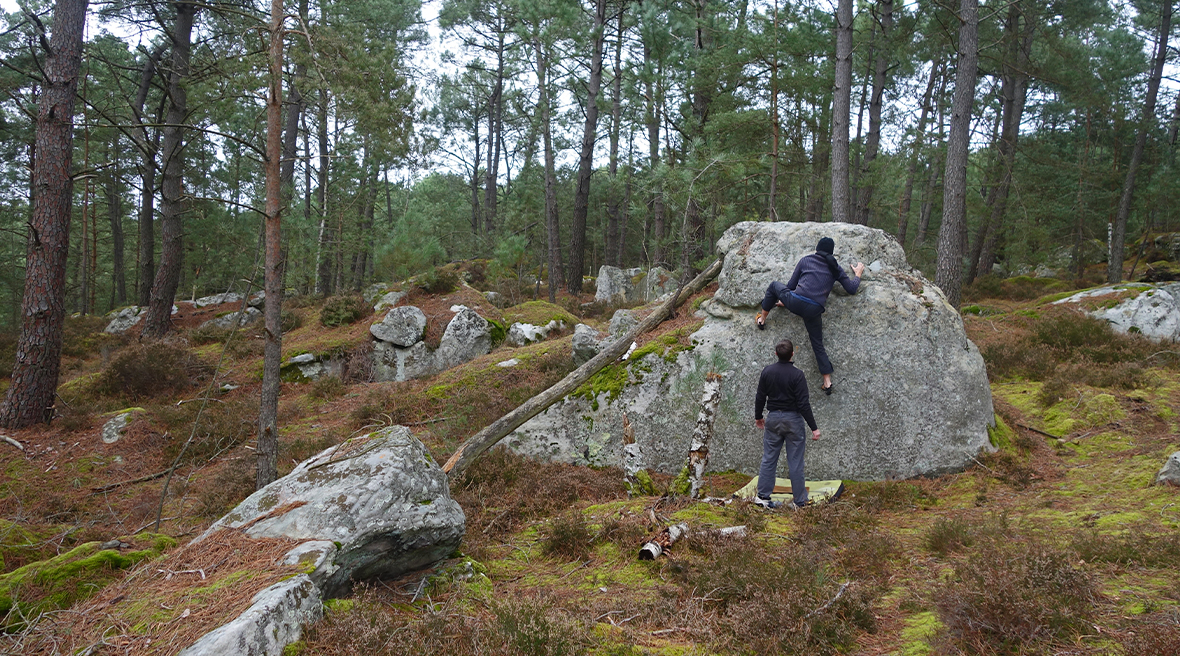 two people bouldering in a forest setting