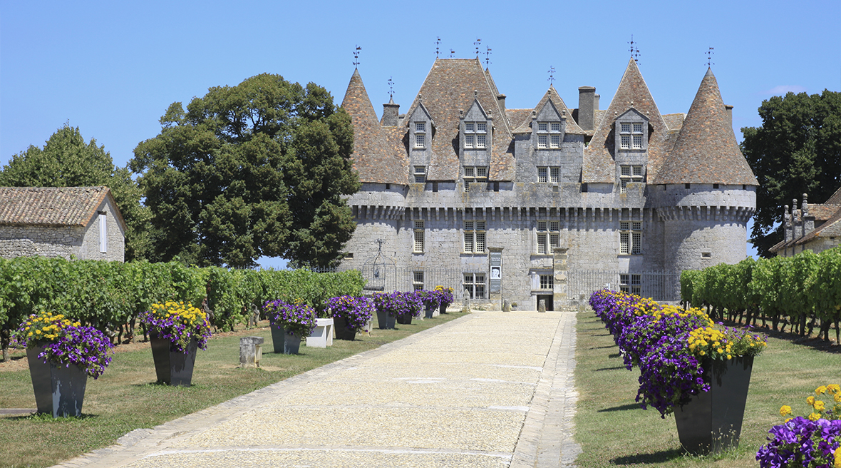 An impressive French castle led up to with a driveway with purple and yellow flowers