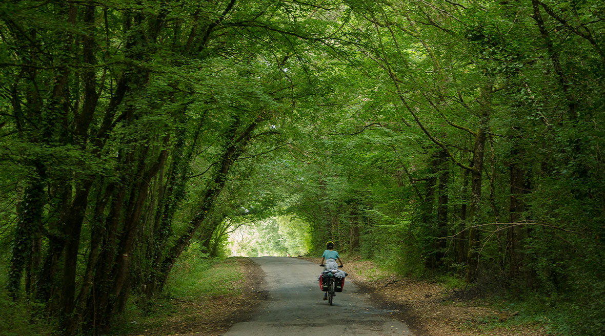 woman on a bicycle riding through a very green archway made by trees