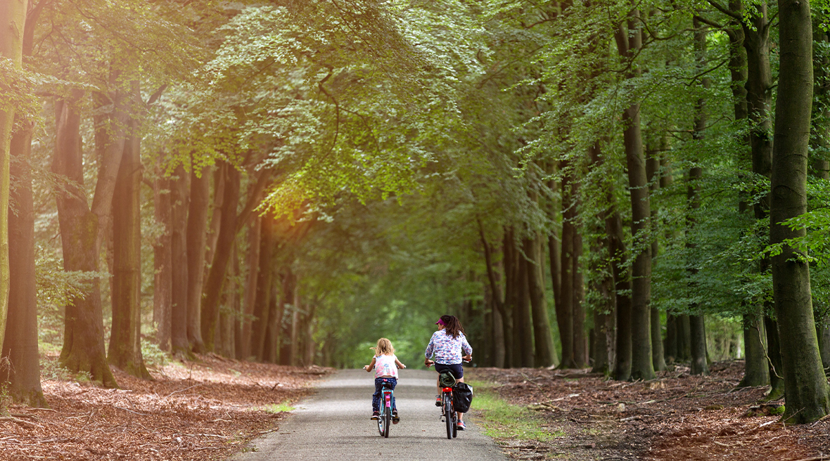little girl cycling with her mother in woodland