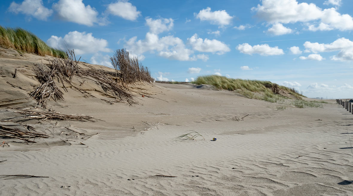 sand dunes with blue sky and white fluffy clouds in the distance