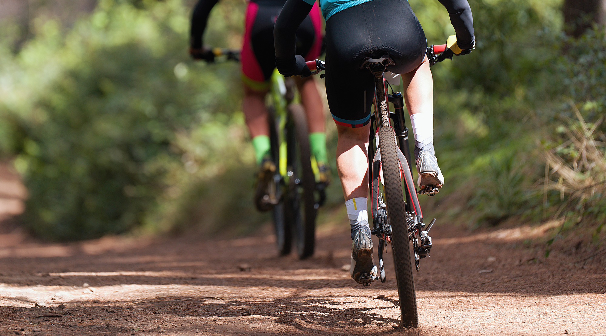 Two mountain bikers riding along a dirt trail in a forest with green shrubbery surrounding it