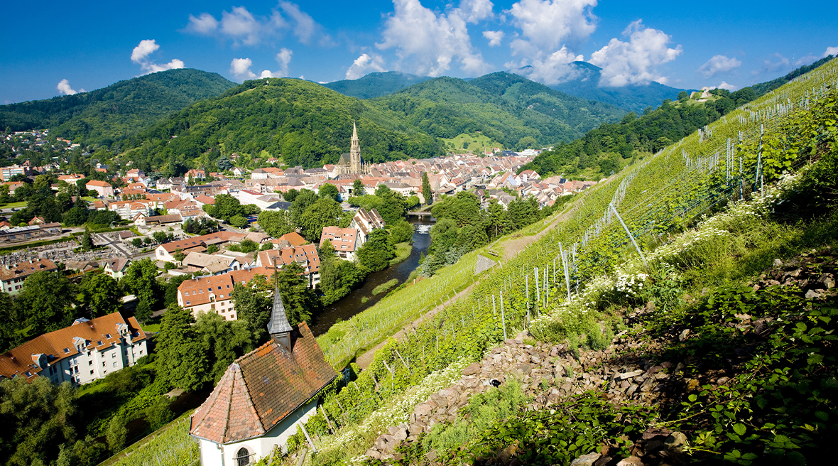 A village and vineyard sit on rolling green hills